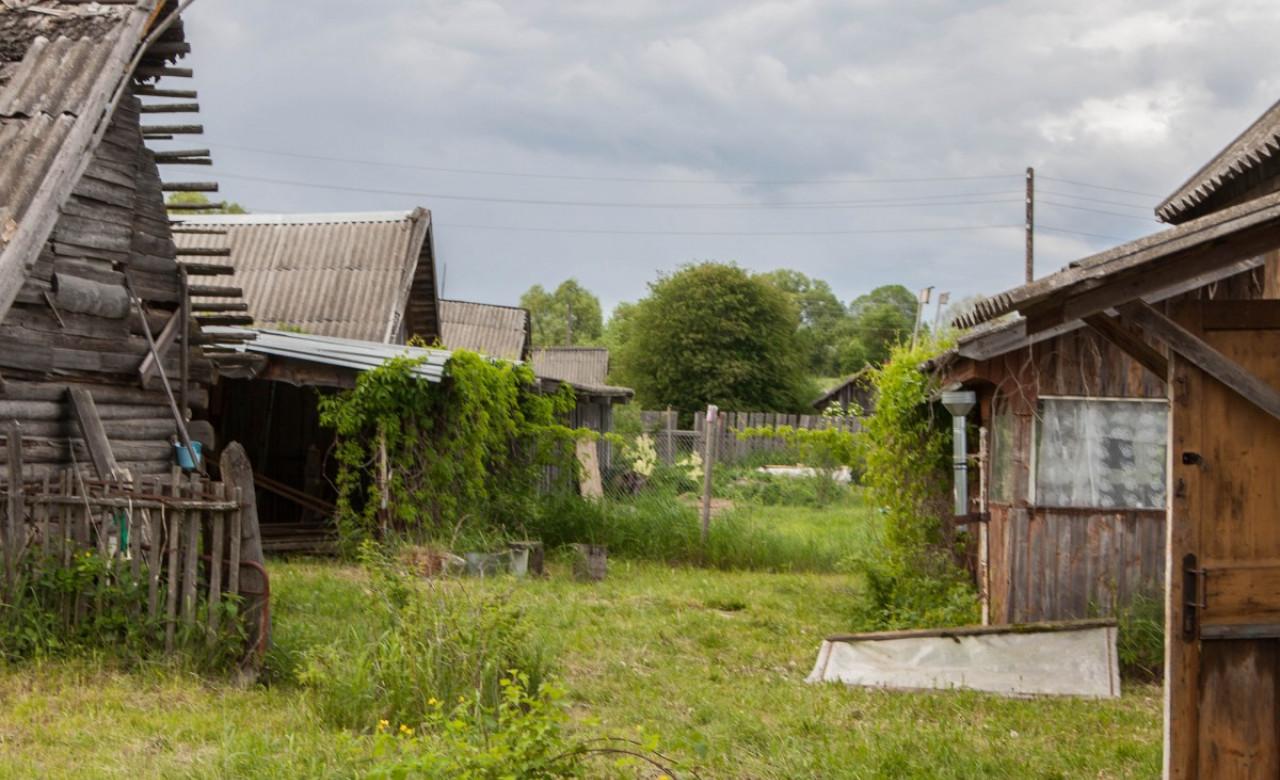 Георгий Михаэле.12