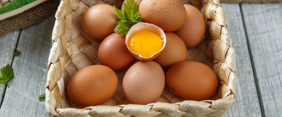Свежие яйца от Дмитрия Александрова