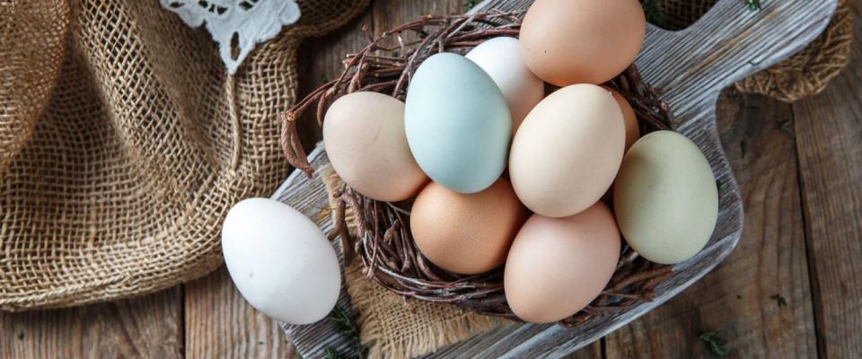 Разноцветные куриные яйца от Виктории Храмцовой