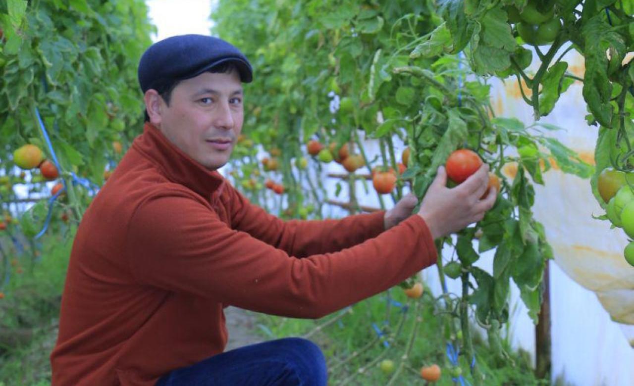 Хасанов Шермат