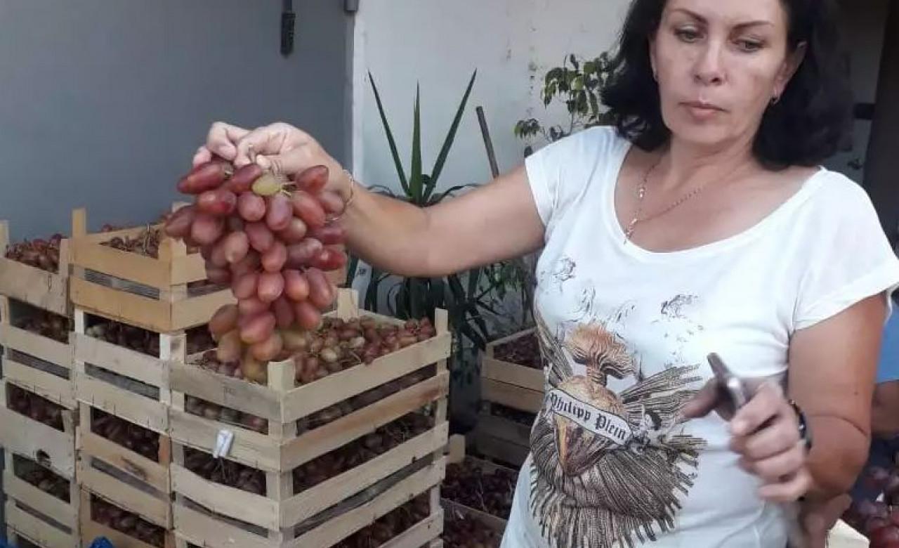 Елена Понамарева