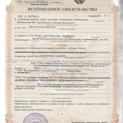 Ветеринарный сертификат МЁД
