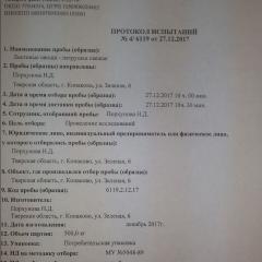 Протокол испытаний ПЕТРУШКА