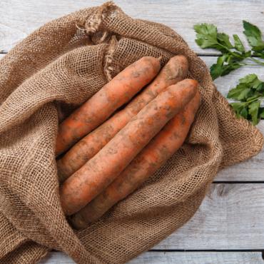 Морковь крупная