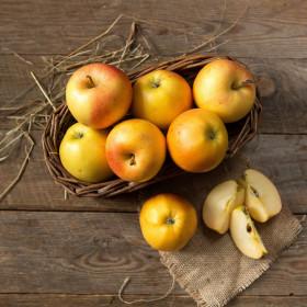 Яблоки деревенские желто-красные