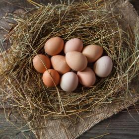 Яйца цесариные от молодок