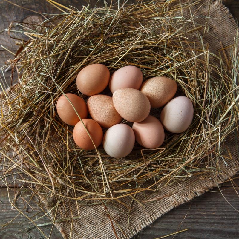 Яйца цесариные от молодокПри практически 100% усвояемости белка и желтка цесарок, они являются универсальными диетическими продуктами, как вместе, так и по отдельности, которые содержат немного калорий и жиров. Нежирные и питательные яйца цесарок содержат всего 43 ккал в 100 г. Многие диеты включают продукты, получаемые от цесарок в качестве основной пищи при снижении веса у полных людей.<br><br>Вес шт: 10