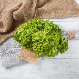 Салат листовой зеленый