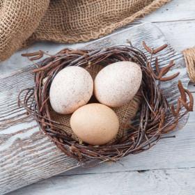 Яйца индюшиные
