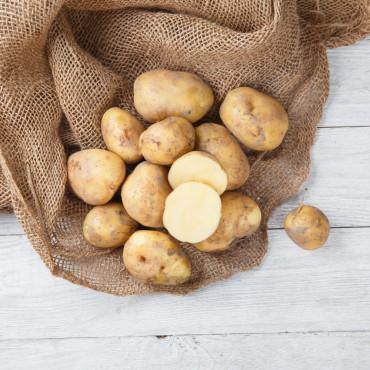 Картофель молодой Гала