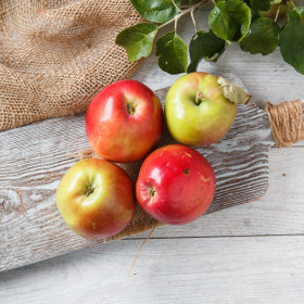 "Яблоки ""Квинти"""