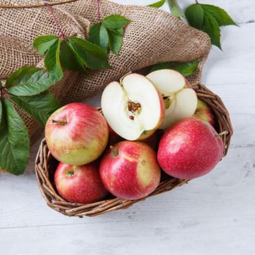 Яблоки Гала зимние