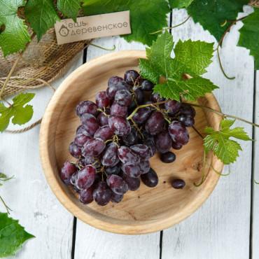 Виноград красный Каталония