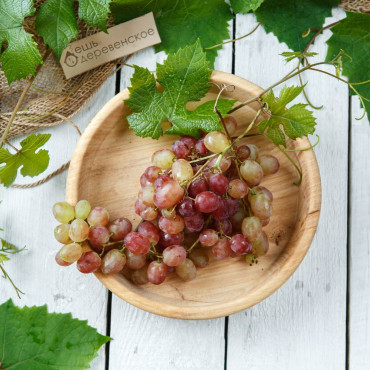 Виноград розово зеленый Кишмиш Велес