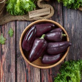 Перец фиолетовый
