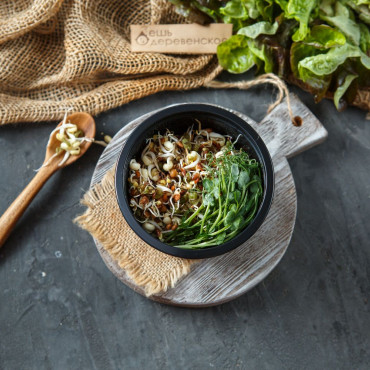 Салатный микс из проростков Здоровье