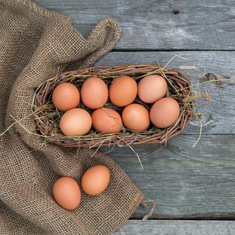 Яйца куриные от Ольги Волковой<br><br>Вес шт: 10