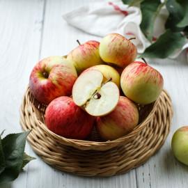 Яблоко «Коричное полосатое»