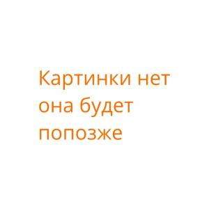 Вадим Рошка